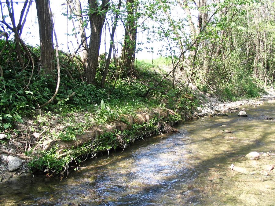 Foron - Annemasse
